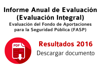 Informe anual de evaluación FASP 2016