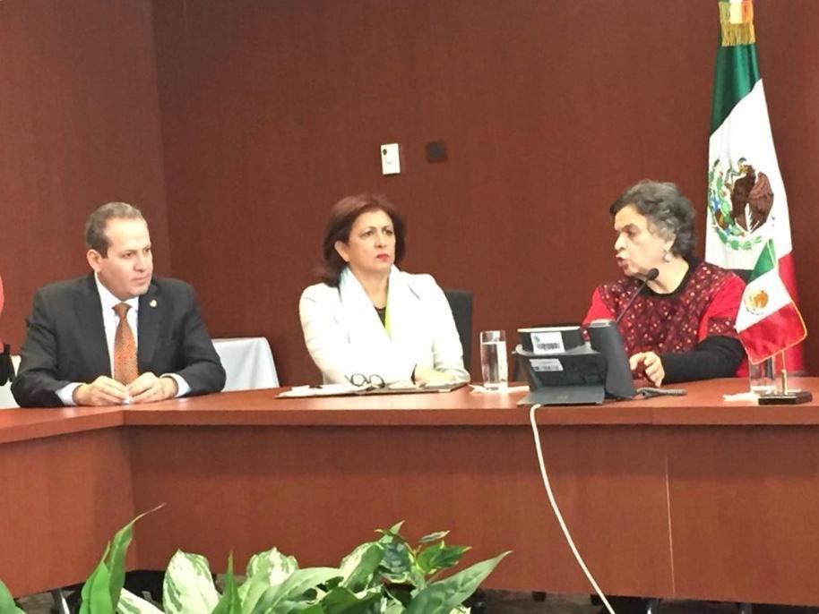 Celebra RED México rectificación del Senado de la República
