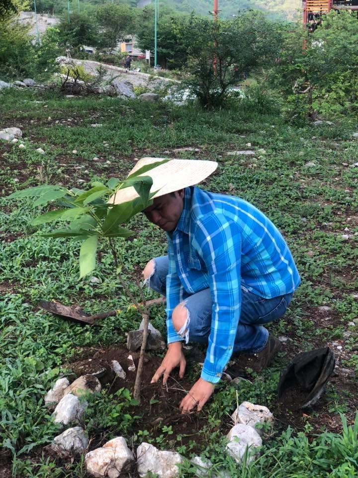 Plantan 3 mil árboles en Jornada de Reforestación 2019